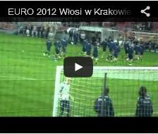 2012-winieta-euro2012-mala