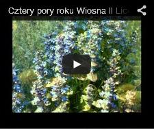 2014-winieta-wiosna-mala