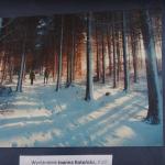 Zimą malowane wyróżnienie