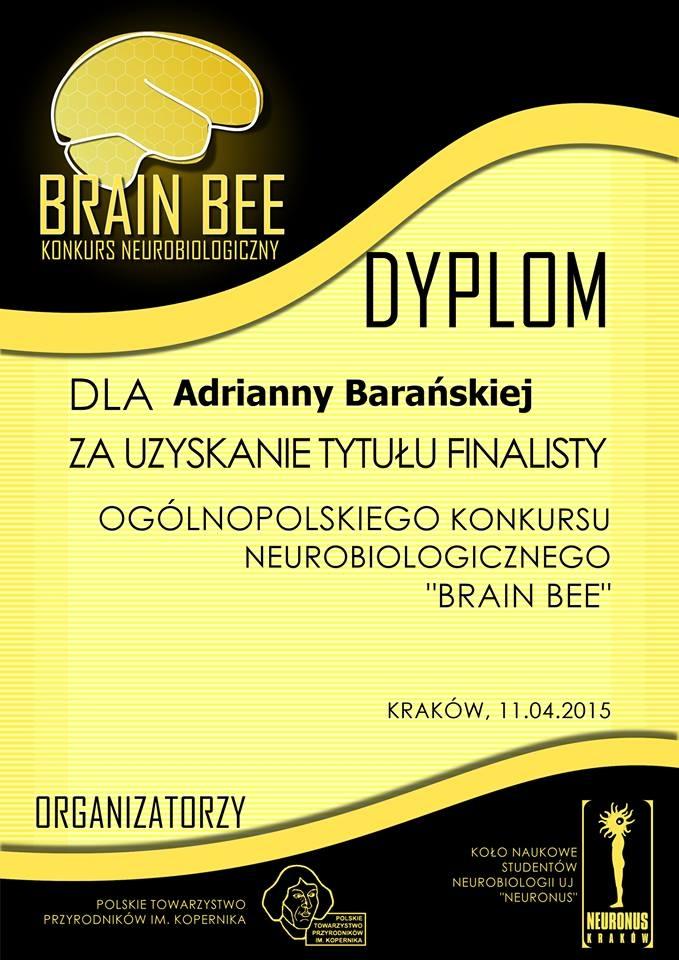 Brain Bee 2015